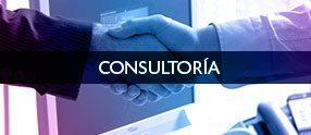 02-ES--Consultoria