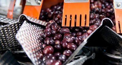 Alimentació sector Eurecat