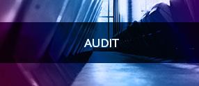 audit eurecat