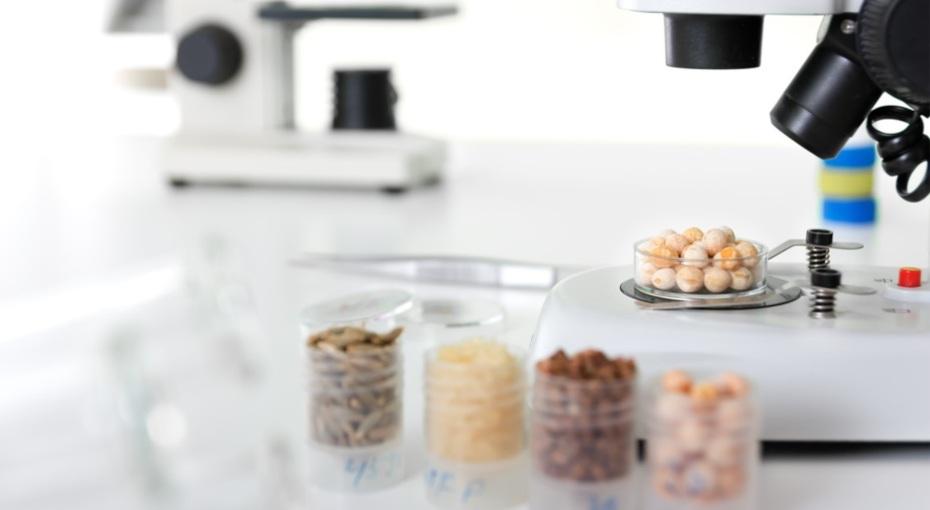 nutrició personalitzada saludable eurecat biotecnologia reus
