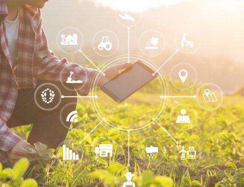 Innovación para una industria agroalimentaria segura, saludable y sostenible