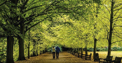 nature4cities eurecat