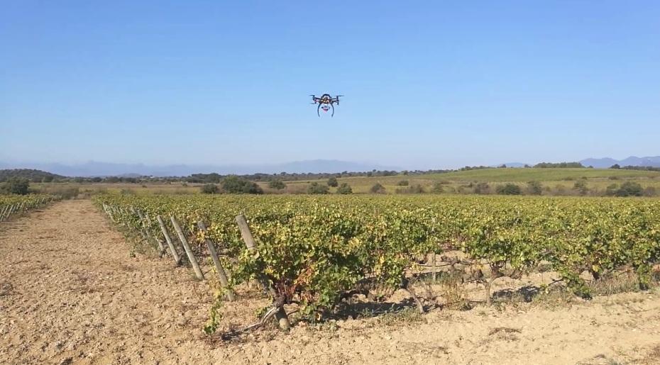 eurecat drons vinyes agROBOfood