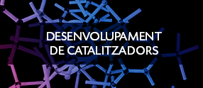 desenvolupament de catalitzadors eurecat