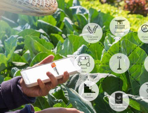 Una aplicación de gestión de emergencias en incendios forestales y una de sistematización en línea de las tareas de los agricultores, ganadoras de los Premios RuralApps 2019