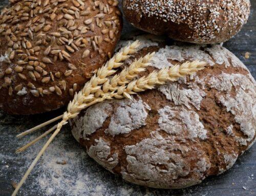 Eurecat lidera un estudio sobre los beneficios de la dieta mediterránea para reducir la obesidad juvenil