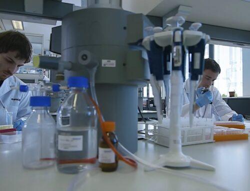 Investiguen l'efecte d'un ingredient sobre la microbiota i el benestar animal