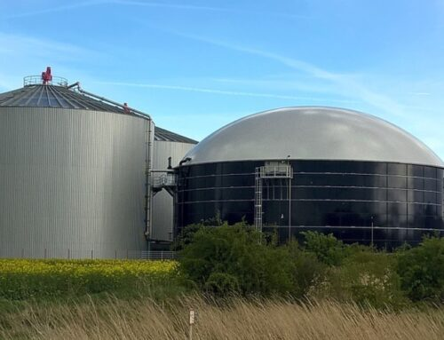 Purification system promoting biogas as an alternative energy source to be developed