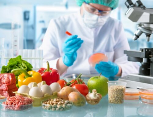 TecnomiFood Network to invest €4 million in optimising the industrial development and innovation of functional foods and nutraceuticals using omic technologies
