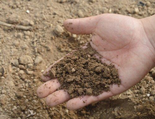 Eurecat participa en un proceso de compra pública innovadora a nivel europeo para avanzar en la descontaminación de suelos